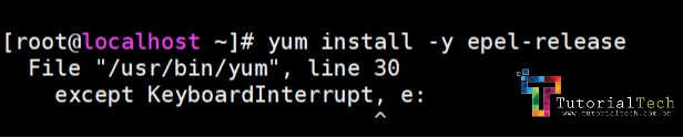 [RESOLVIDO]CentOS 7 Problema Yum Keyboard Interrupt error